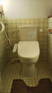 ダイワ化成 簡易水洗洋便器に取替ました。